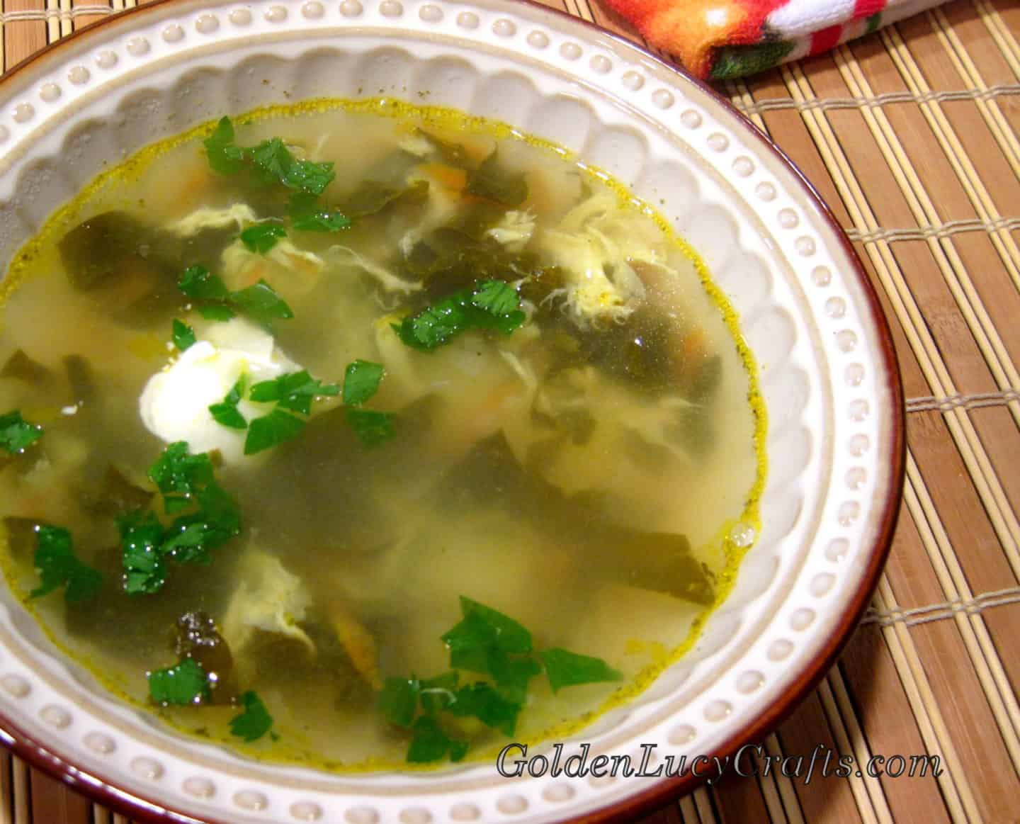Green Borsch Sorrel Soup Vegetarian Goldenlucycrafts