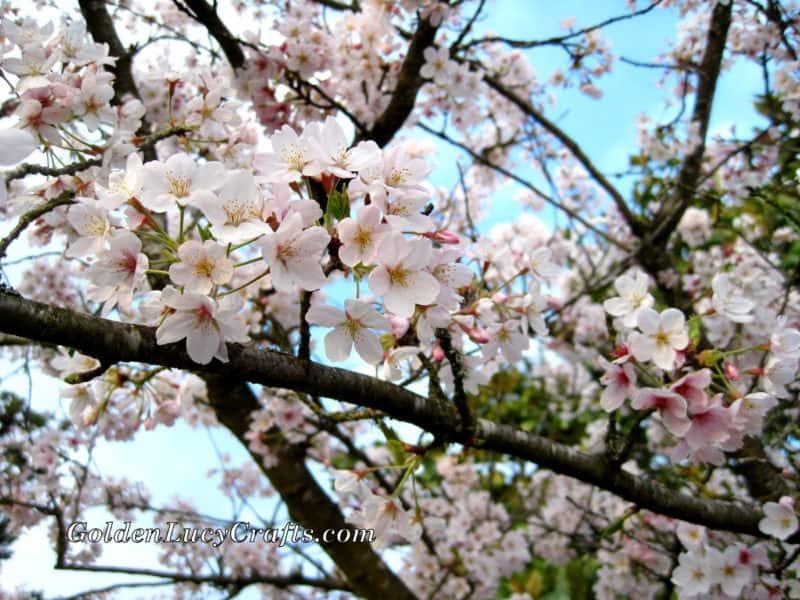 Crochet Cherry Blossom Branch