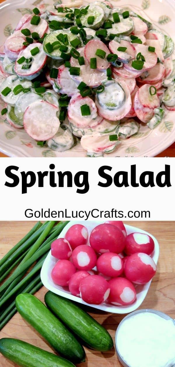 Radish, cucumber salad recipe, spring salad, Ukrainian recipe