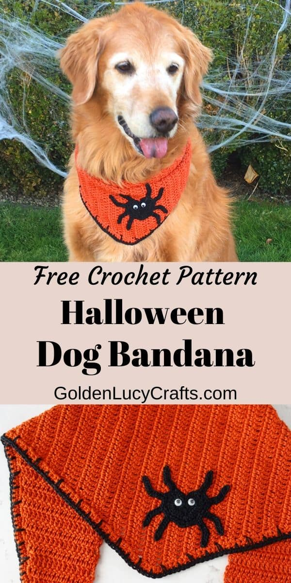 Halloween dog bandana, crochet for pets, cute, orange bandana, DIY, free pattern