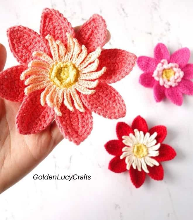 Crochet dahlia in the palm of the hand
