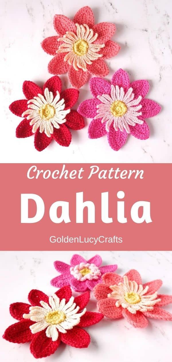 Dahlia crochet pattern