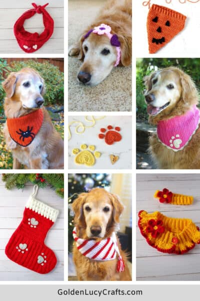 Images collage - golden retriever dressed in crochet items.