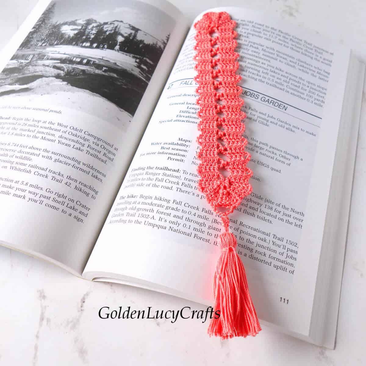 Open book and crochet bookmark.